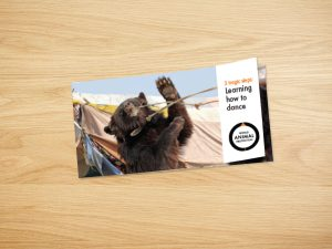 World Animal Protection – Bear Appeal